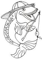 Fishing coloring