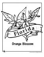 Florida coloring