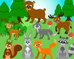 Forest clipart