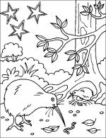 Freshwater Birds coloring