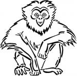 Gibbon coloring
