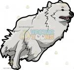 Great Pyrenees clipart