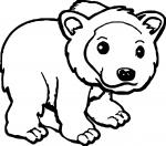 Kodiak Bear coloring