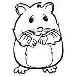 Hamster coloring