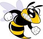 Hornet svg