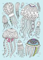 Jellies coloring