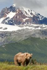 Katmai National Park coloring