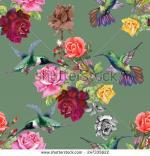 Kolibri coloring