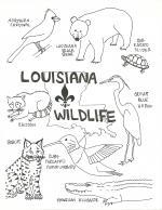 Louisiana coloring