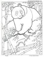 Mammal coloring