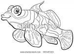 Mandarinfish coloring