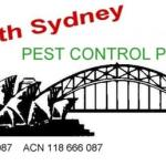 Maroubra South clipart