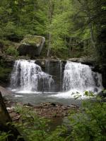 Mill Creek Waterfall coloring