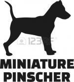 Miniature Pinscher clipart
