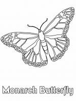 Monarch Butterfly coloring