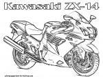 Motor coloring