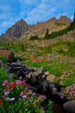 Mount Three Fingered Jack coloring