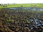Muddy Field svg