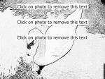 Mute Swan coloring