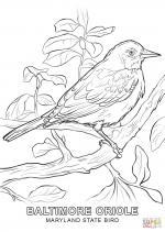 Myrland coloring
