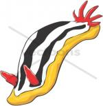Nudibranch clipart