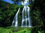 Opaeka'a Falls svg