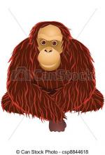 Orangutan clipart