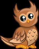 Owlet clipart