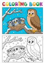 Owlet coloring