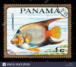 Panama Queen clipart