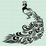 Peacock svg
