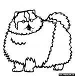 Persian Cat coloring