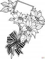Poinsettia coloring
