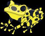 Poison Dart Frog clipart