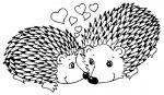 Porcupine coloring