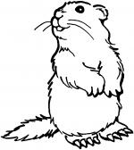 Prarie Dogs clipart