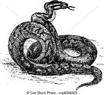 Python clipart
