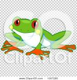 Red Eyed Tree Frog clipart