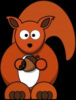 Red Squirrel clipart