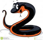 Red-bellied Black Snake clipart