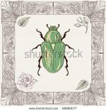 Rose Chafer coloring