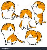 Scottish Fold clipart