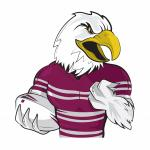 Sea Eagle clipart