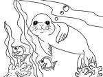 Sea Lion coloring