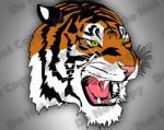 Siberian Tiger svg