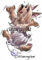 Silky Terrier clipart
