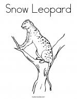 Snow Leopard coloring