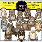 Spectacled Owl clipart