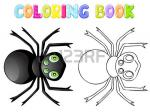 Spider Wasp coloring