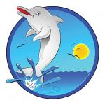 Spinner Dolphin clipart